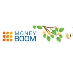 Скидка 25% от MoneyBOOM!